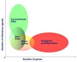 Genetic predisposition to infectious diseases