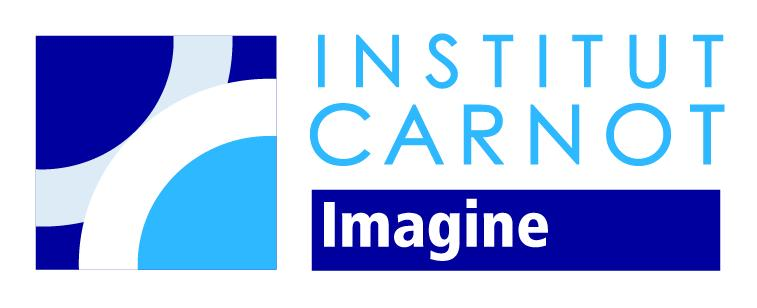 Institut Carnot Imagine
